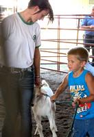 NortheastNebNewsCo_CedarCountyFair_GoatShow.LaceyAidenSchindler_071913_30