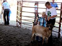 NortheastNebNewsCo_CedarCountyFair_GoatShow.HunterPehrson_071913_24