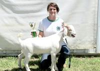 NortheastNebNewsCo_CedarCountyFair_GoatShow.LaceySchindler_071913_04
