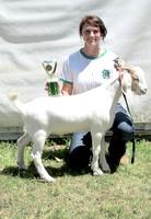 NortheastNebNewsCo_CedarCountyFair_GoatShow.LaceySchindler_071913_06