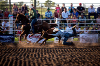 20160721_Rodeo Gallery_Schank051