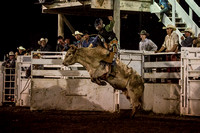 20160721_Rodeo Gallery_Schank144