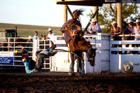 20160721_Rodeo Gallery_Schank074
