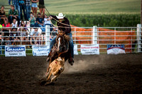 20160721_Rodeo Gallery_Schank094