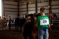 20160722_Livestock Show_Schank011