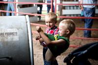 20160722_Livestock Show_Schank021