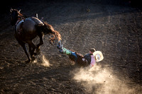 20160721_Rodeo Gallery_Schank046