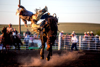20160721_Rodeo Gallery_Schank078