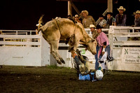 20160721_Rodeo Gallery_Schank141