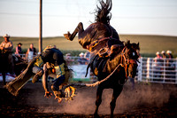 20160721_Rodeo Gallery_Schank079